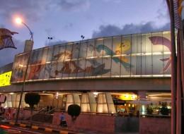Centro Comercial 7 Palmas