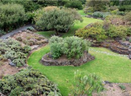 El Jardín Botánico